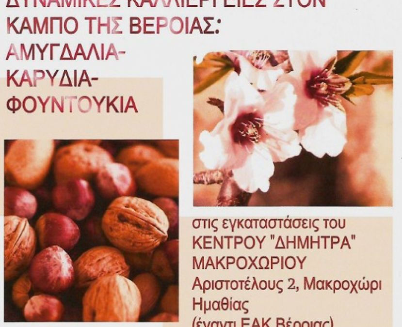 Συμμετοχή του Τ.Φ.Ο.Δ.Ν. σε Ενημερωτική Εκδήλωση / Εσπερίδα