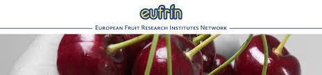 Συμμετοχή του Τ.Φ.Ο.Δ.Ν. σε διαδικτυακή συνάντηση του EUFRIN