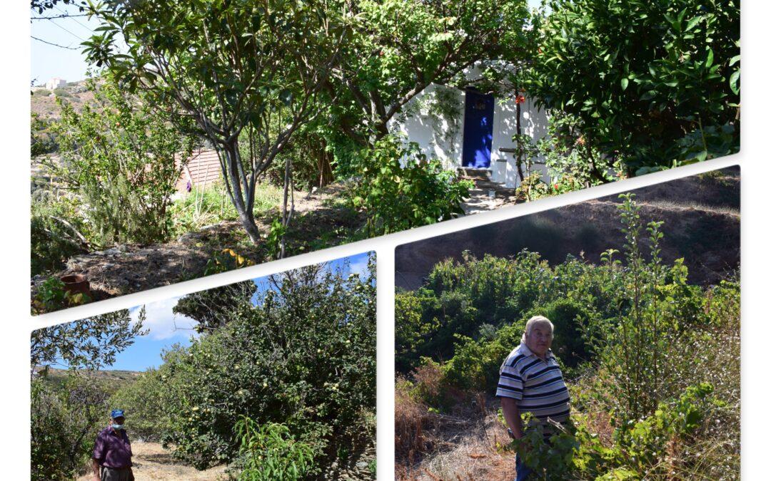Καταγραφή και μελέτη τοπικών ποικιλιών φυλλοβόλων οπωροφόρων δένδρων στην Άνδρο.
